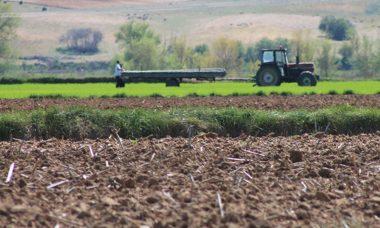 La Consejería de Agricultura y Ganadería recibe 71.874 solicitudes de la PAC, todas realizadas de forma telemática